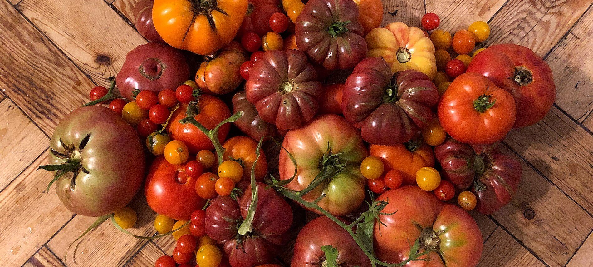 Large variety of fresh garden tomatoes on a brown butcher block countertop